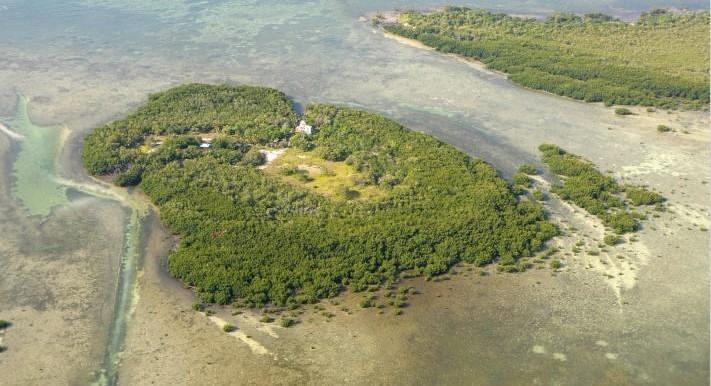 hopkins-island-for-sale